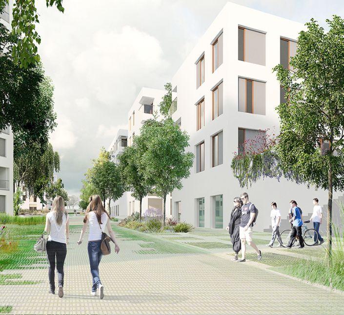 osiedle niskich bloków, spacerujący ludzie wśród zieleni, mieszkanie+